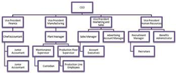 Organizational Chart Of A Food Service Establishment What Is An Organogram Definition Structure Example