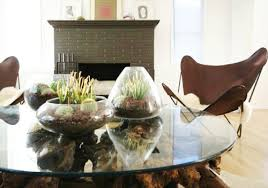 terrariums for dining table decoration