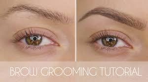 eyebrow grooming tutorial in 6 steps shonagh scott showme makeup you
