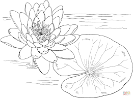 Small Picture Monet Coloring Pages Water Lilies