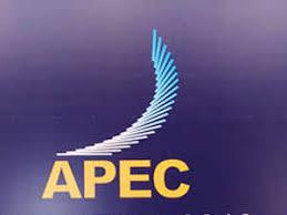 Apec Apec Summit Recognition Of Vietnams Economic Achievements