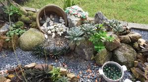 after 7 months succulents rock garden