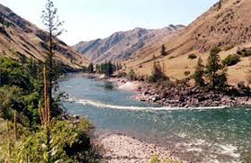 Image result for salmon idaho