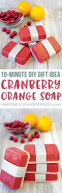 10-Minute DIY: Cranberry Orange Soap. Diy Gifts DadFriend Gift ...