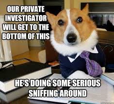 Our private investigator will get to the bottom of this He's doing ... via Relatably.com