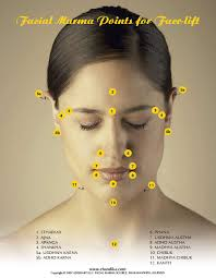 Acupuncture Facelift Points Chart Dawn Hunter Holistic Healing Fairfield