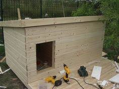 Dog house plans  Dog houses and Insulated dog houses on PinterestInsulated dog house     a mini garden on top  Um  YES