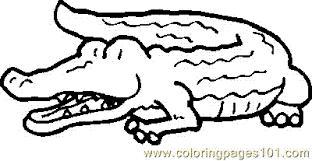 Small Picture Crocodile Aligator Coloring Page 10 Coloring Page Free Crocodile