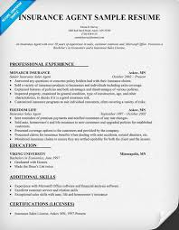 Insurance agent resume sample insurance internships for Insurance agent resume  examples .