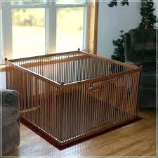 dazzling indoor dog kennels in closet traditional