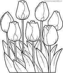 Garden Flowers Coloring Pages Garden Flowers Coloring Pages Daisy