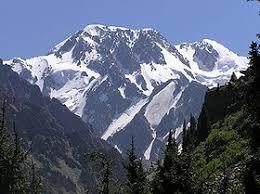 Алматинский заповедник Википедия Пик Талгар