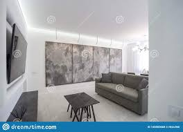 Flat Hall Design Luxure Hall Interior Loft Flat In Grey Style Design With