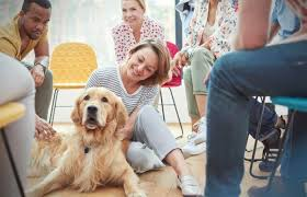 How To Socialize A Dog Lovetoknow
