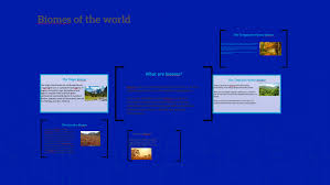 What Are Biomes What Are Biomes By Pedro Henrique Rocha On Prezi