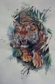 tiger drawing tattoo. Fine Tattoo Tigers Drawings Colored  Google Search Watercolor Tiger Tattoo  Tattoo Drawings Intended Tiger Drawing I