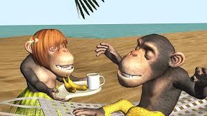 funny good morning song monkeys sing good morning