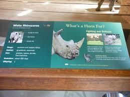 zoo exhibit sign. Wonderful Zoo Bronx Zoo Zoo Center White Rhinoceros Exhibit Signage With Sign E
