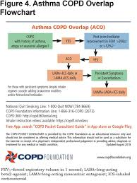 The New Copd Pocket Consultant Guide App Journal Of The