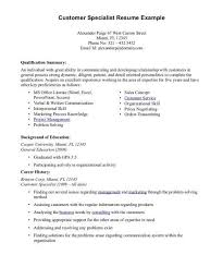 Summary For Resume Examples Stunning Professional Summary Resume Examples Customer Service Resume With