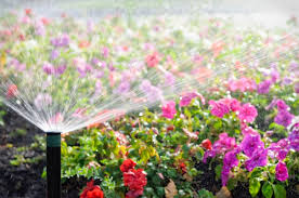 Small Picture Irrigation Design Installation Repair Service Lawn