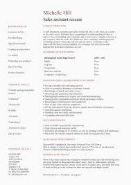 Career Fair Resume New Resume Employment History Free Templates Extraordinary Employment History Resume