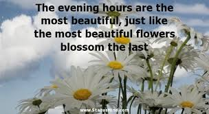 Beautiful Evening Quotes With Images Best of The Evening Hours Are The Most Beautiful Just StatusMind