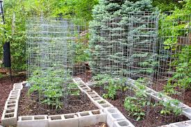 Small Picture Small Vegetable Garden Ideas Gardening Ideas