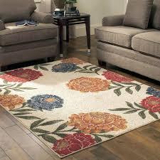 excellent 5 x 7 area rug 5 7 area rugs under 50 alexanderreidross in 5x7 area rugs under 50 ordinary