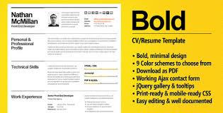 10 Beautiful Resume Html Templates