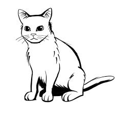 シンプルな猫たち