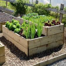 Small Picture Awesome Raised Garden Bed Planting Ideas Raised Bed Vegetable
