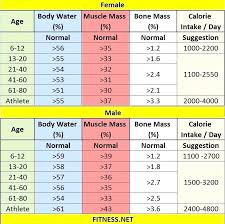 Body Fat Conversion Chart Punctual Ideal Body Muscle Percentage Chart Body Fat And