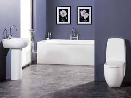 Ideas For Bathroom Color Schemes bathroom color scheme ideas