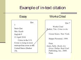 Essay Internal Citation Mla In Text Citation