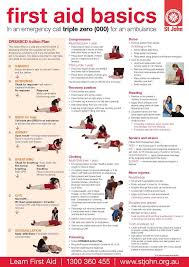 Free Printable First Aid Chart The First Aid Lady Thefirstaidlady On Pinterest
