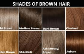 Light Brown Hair Color With Highlights Hair Fashion Line For