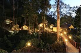 tree house resort. Hotel Information Tree House Resort W