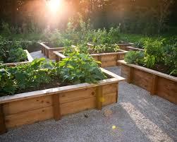 small garden box ideas