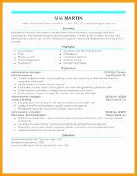 C Level Resume Unique C Level Executive Assistant Resume Luxury Executive Level Resume