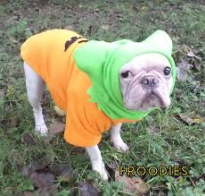pug in pumpkin costume. Wonderful Costume French Bulldog Boston Terrier Pug Dog Froodies Hoodies Halloween Costume  Cosplay Pumpkin Fleece Jacket Sweatshirt Coat In