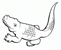 Small Picture Baby Crocodile Coloring Page Free Printable Coloring Pages