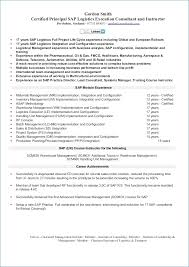 Second Career Resume Examples Best Of Second Career Resume Examples Peterpanplayersorg