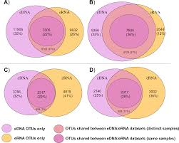 Compare Dna And Rna Venn Diagram Metabarcoding Monitoring Analysis The Pros And Cons Of