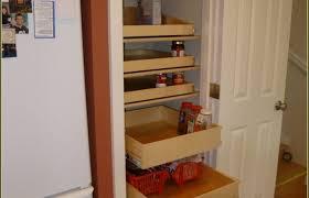 kitchen decoration medium size impressive kitchen cupboard shelf inserts cabinets ideas cabinet cartoon rack cartoon