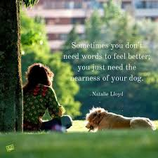 Quotes About A Girl And Her Dog Stunning 48 Dog Quotes For People Who Love Dogs Dog Pet Dogs And Designer