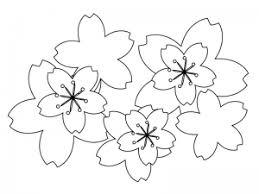 ぬりえ素材桜の花びら春 イラスト無料かわいいテンプレート