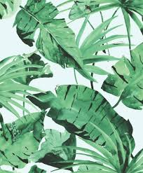 Jungle Behang Licht Groen Dit Jungle Behang Komt Haast Tot Leven
