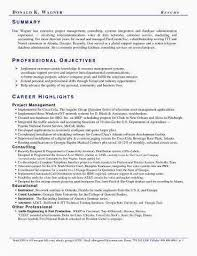 Resume Summary Examples Entry Level Impressive Entry Level Resume Examples Best Of Resume Summary Examples Entry