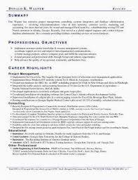 Resume Summary Examples Entry Level Amazing Entry Level Resume Examples Best Of Resume Summary Examples Entry